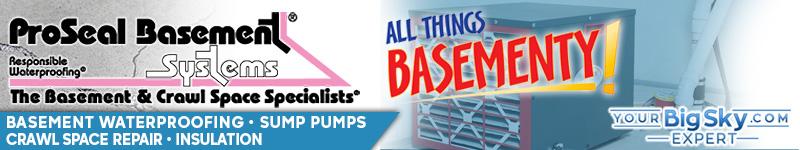ProSeal Basement Systems