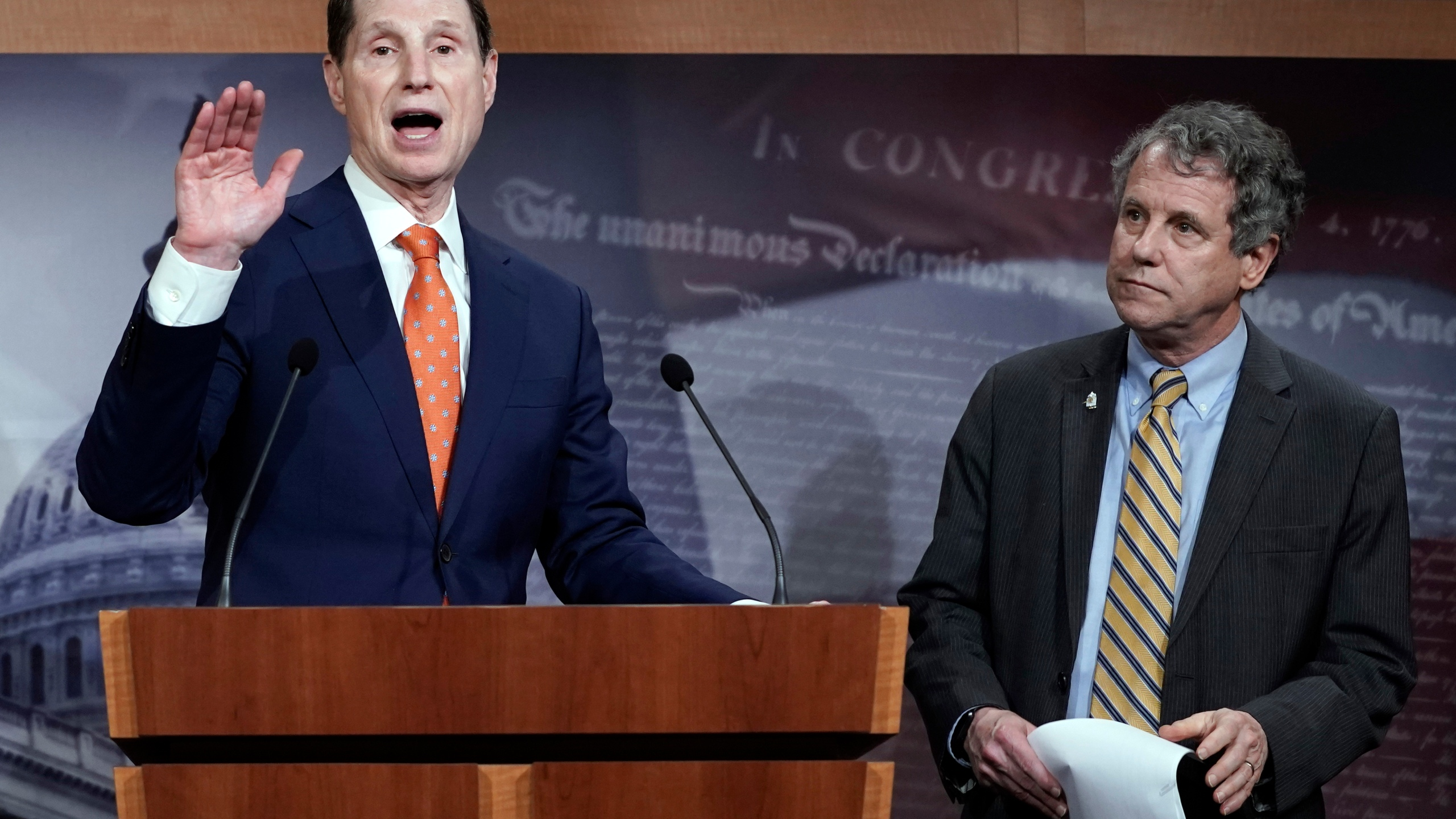 Ron Wyden, Sherrod Brown