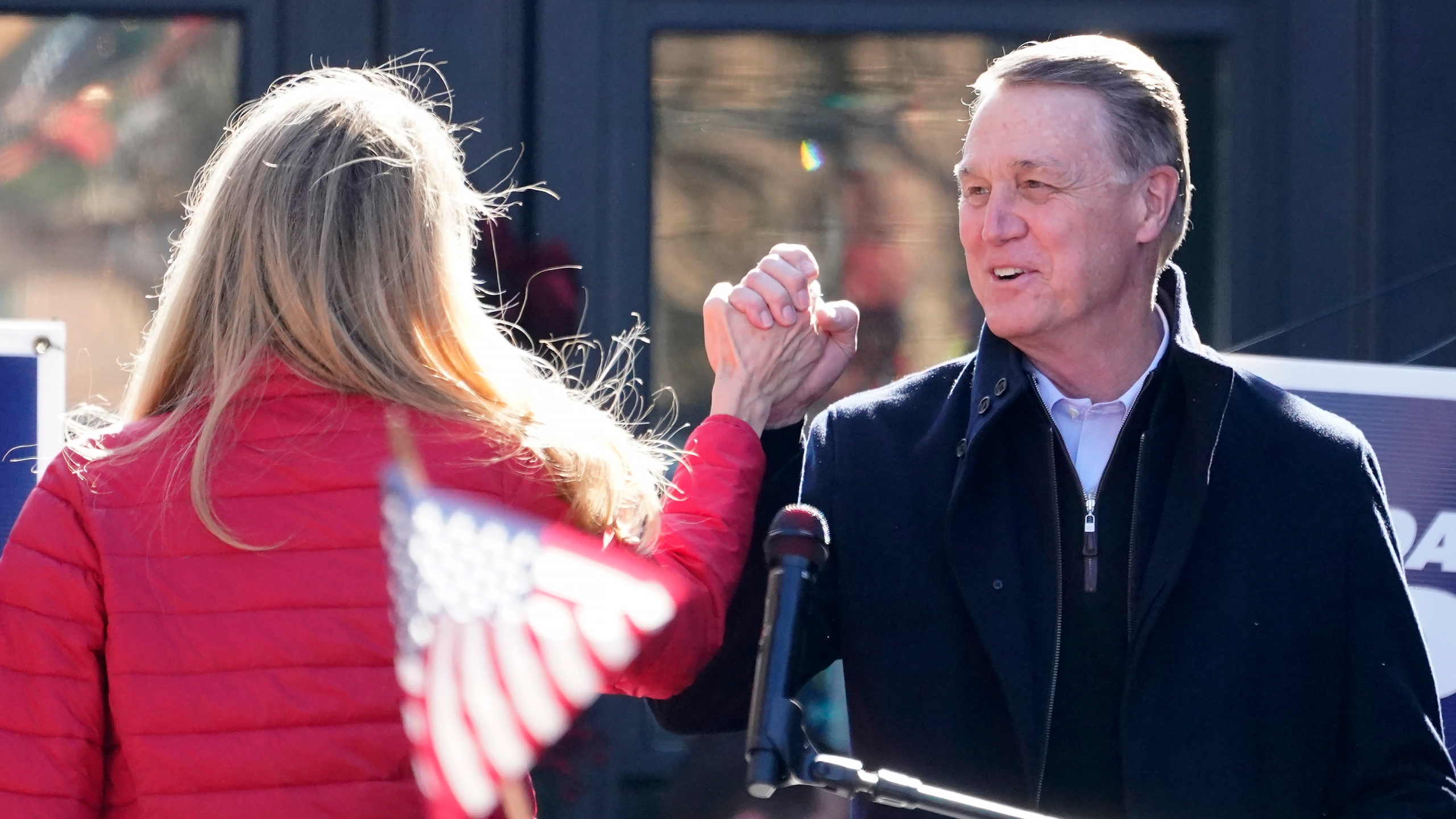 David Perdue, Kelly Loeffler